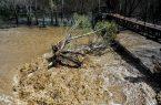 هشدار سازمان هواشناسی نسبت به سیلابی شدن رودخانه ها و مسیل ها