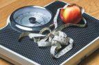 ۶۰درصد ایرانیهای بالغ، مشکل چاقی دارند